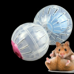 Hamster Guinea Pig Exercise Running Ball Play Gyro Toy Plastic Pets Sports
