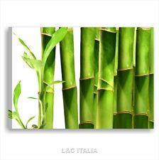 Bamboo 4 QUADRO MODERNO 70x50 QUADRI ARREDO CASA SPA BENESSERE ZEN STAMPA TELA