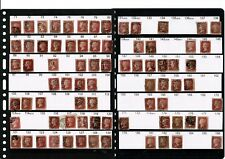 #001 GB QV 18.. 1d penny red plates partial collection + 1d red-browns & stars