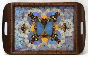 Vintage Art Deco Brazilian Brazil Butterfly Wings Wood Dresser Serving Tray