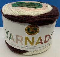 Lion Brand Yarn 221-608 Yarnado Yarn, Windstorm, Medium Wt (4); 187 Yards