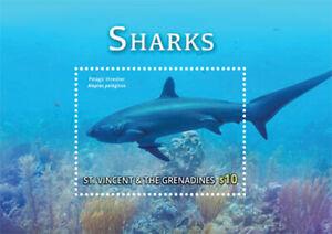 St. Vincent 2015 - Shark, Pelagic Thresher, Marine Life - Souvenir Sheet - MNH