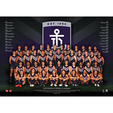 AFL 2017 Team Fremantle Dockers POSTER 60x80cm NEW Aussie Football Players
