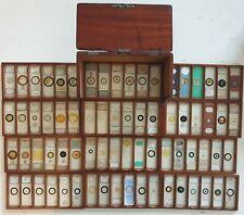 More details for a fine antique cased set of 72 microscope slides.
