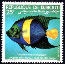 Angel Fish of Red Sea 1981 Africa Djibuti Somali Coast Mint Never Hinged Stamp
