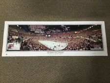 09c73017d13 2008 Stanley Cup Champions Panoramic Red Wings Penguins Rob Arra Collection