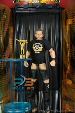 WWE AEW ROH WCW ECW IMPACT NXT MATTEL K ELITE UNDISPUTED ERA ADAM COLE BABY!!