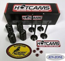 HotCams Stage 1 Cam  KibbleWhite Valves with Spring Kit Honda CRF 450R 02-06