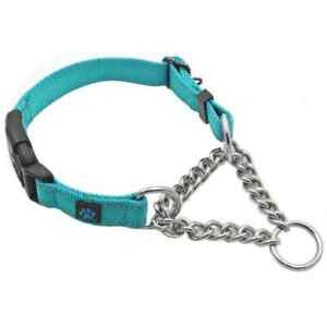 Martingale Dog Collar - Medium - Teal