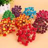 40Pcs Mini Weihnachten Schaum Frosted Obst Kunst Holly Berry Blumen Ausgang D