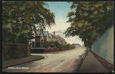 Bolton. Green Lane by W. Davies, 363 Chorley Old Road, Bolton.