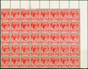 Straits Settlements 1937 8c Scarlet Not Issued V.F MNH Corner Block of 40
