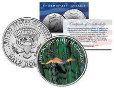 SPECTACULAR WEEDY SEADRAGON  *Fish Series* JFK Kennedy Half Dollar U.S. Coin