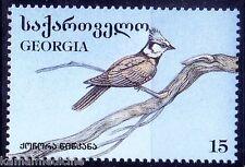 European Crested Tit, Birds, Georgia 1996 MNH (I12)