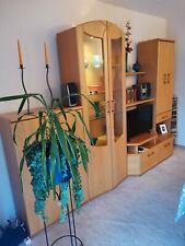 Schrankwand,Wohnzimmer,Anbauwand,Schrank,Massivholz