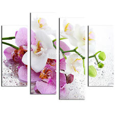 Not Framed Home Decor Canvas Print Pink Flower Floral Orchid Wall Art Pictures