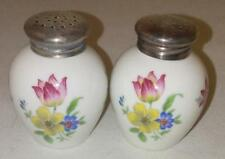 Vintage Rosenthal Thomas China Floral Salt and Pepper Shakers 835 Hb Silver Tops