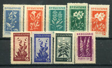 Bulgaria 1953 MH 80% Flowers