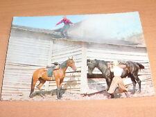 Winnetou Postkarte aus dem Film Unter Geiern : Nr. 27