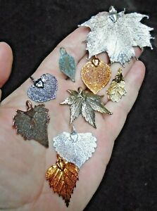 Mixed Leaf Collection - Real Leaf Jewellery Clearance 1012