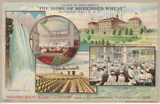 Multi-view, Home Of Shredded Wheat, Niagara Falls, NY, Pre-Linen  Postcard