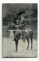 an1024 - R. Martin the Mounted Crier & Horse, in Ilfracombe - postcard