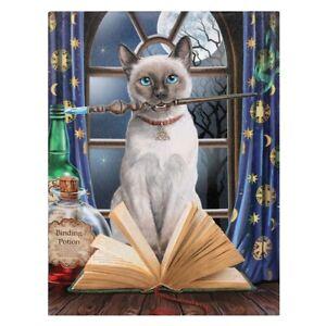 Lisa Parker, Kleine Leinwand, Bild, Leinwanddruck, Katze, Hocus Pocus