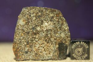 NWA 13282 L3 Meteorite 4.5 gram complete slice estimated to be late sub-type 3.8
