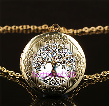 Living Tree of Life Photo Glass Gold Plating Chain Locket Pendant Necklace