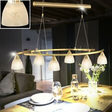 Antique pendant light living room hanging lamp adjustable kitchen table lighting