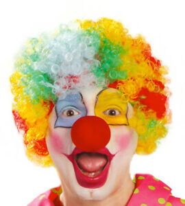 Adult Multi Coloured Rainbow Circus Curly Afro Clown Wig Halloween Fancy Dress