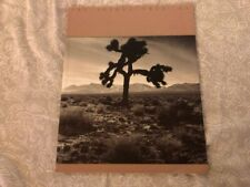 U2-los Joshua Tree Tour Book 1987 Rara