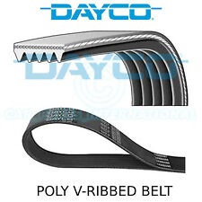 Dayco Poly V Belt - Auxiliary, Fan, Drive, Multi-Ribbed Belt - 5 Ribs - 5PK1300