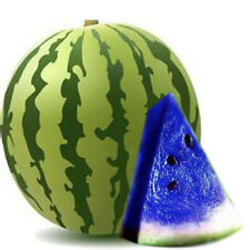 10PCS Blue Watermelon Seeds Vegetable Organic New Variety Plant Home Garden