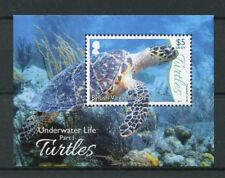 British Virgin Islands BVI 2017 MNH Underwater Life Pt 1 Turtles 1v M/S Stamps