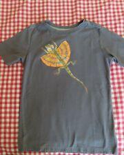 Boys Tea Collection gray flying dragon lizard t-shirt size 14 spring summer