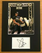 More details for john cena  (wwe wm36)   **hand signed**  16x12 mounted display ~ autographed