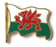 Wales Flag on Pole Gold Plated Enamel Lapel Pin Badge