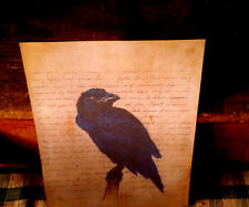 PRiMiTiVE FarmHouse 8.5x11 Raven Bird Autumn Harvest Print Picture Only U Frame
