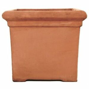 Terracino Baytree Square Planter/Terracotta Pot/Gardening/Flower Container