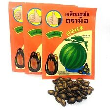 12 x 22G WATERMELON SEEDS SNACK HAND BRAND SALT ROASTED BAKED NUTS PARTY HEALTHY