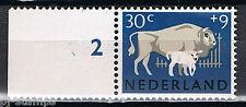 Nederland Plaatfout 815PM1 met velrand Nieuw Mast 2013 Cat waarde € 20