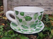 Cup Saucepan Planting Flowers Grass Herb Garden Basil Set Green Cream Leaf Gift