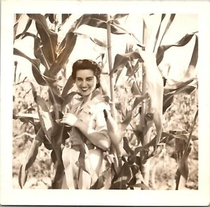 Woman in Corn Field Lot of 3 Amateur Photos 4 x4 Circa 1940 P4