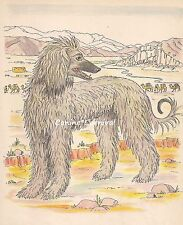 Afghan Hound Dog In Desert Sweet Vintage Art Print 1950