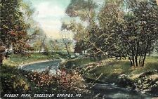Excelsior Springs MO Regent Park~The Fishing River Runs By It~1909 Postcard