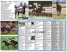 Champion Race Filly Miesque 1000 Guineas picture pedigree Kingmambo Breeders Cup
