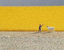 Scenery - Field Grass - Golden yellow