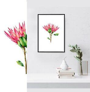Australian Native Protea Flower Watercolour Botanical Wall Art Canvas Print