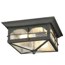 Flush Mount Ceiling Light Outdoor Cottage Porch Garage Carport Clear Seedy Glass